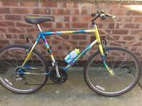 Mans Raleigh Mantis mountain bike
