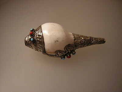 Muschel Schnecken Sankha ausTibet(Horn)