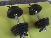 Dumbbells 2x12(~13-14kg with bar)
