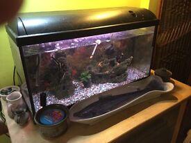 Aquarium set up - tropical for sale