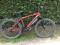 Apollo feud mountain bike for sale in haxby