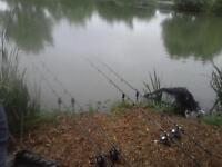 wanted 2 carp rods and alarms