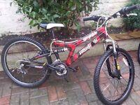 Boys Reebok Shadow Mountain Bike
