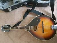 ozark acoustic mandolin with hard case