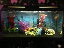 Marina 95 Aquarium Fish Tank + Accessories