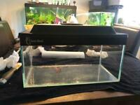 """Clear Seal - Standard Tank - 16"""" x 8"""" x 8"""" - 16.8 litre (2 tanks available)"""