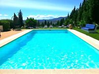 LARGE SOUTH OF FRANCE VILLA SLEEPS 12! Great location, near Cannes, Nice and Valbonne