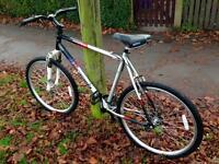 Barracuda Alloy Mountain bike - Excellent