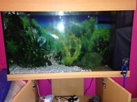 Fish tank 125 litre Juwel