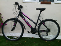 ladies or girls bike