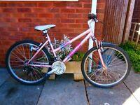 Ladies Falcon Solano Mountain Bike