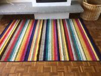 Multi colour rug
