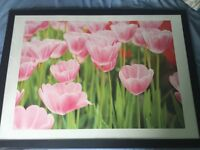 Beautiful pink flower framed picture