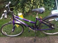 Raleigh lady bike for sale
