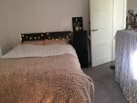 Double bedroom to rent during summer