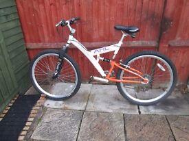 ladys or girls nountain bike