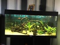 Jewel tank 180litre