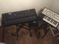 Synth/keyboard player available