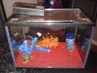 Small fish tank.