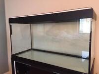 Fluval Roma 200l fish tank (WxDxH 100 x 40 x 50cm)