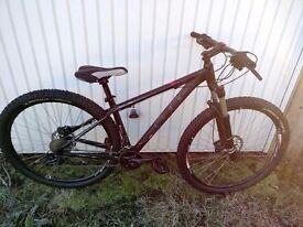 Cube LTD Series 29er Mountain bike