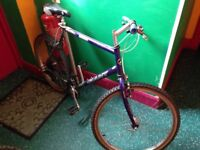 Adult / Teenagers Bike, GITAN, runs perfectly well, just need a little attention with the brakes