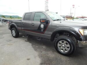 2009 Ford F-150 XLT/FX4/Lariat/King Ranch/Platine