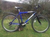 """Concept Polaris mens 19"""" mountain town bike bicycle"""