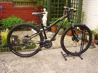 ladies specialized 29er mountain bike