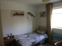Room to let in 5 bedded house