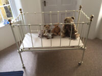 Antique Cot for Display/Storage