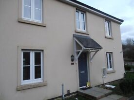Gorgeous, modern 2 bedroom house with rear garden. A very short walk from Ebbw Vale train station..
