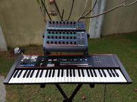 Roland JX-3P Kiwi Mod