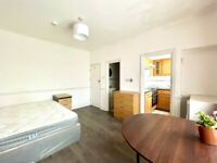 **DSS WELCOME** A LARGE STUDIO FLAT ON THE GREAT CAMBRIDGE ROAD IN TOTTENHAM N17