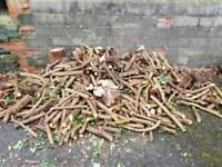 Free Wood! *Update*