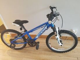 Boys 20 inch mountain bike hardly even outside like new paid 160 for it like new