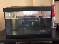 Fish tank with filter, heater and light