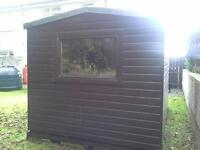 12 Foot x 8 Foot Garden shed for sale