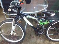 Carrera boys bike