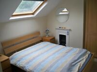 Large double-bed room in friendly shared house. Would suit young professional or student.