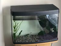 Love fish 64L panoramic tank and stand