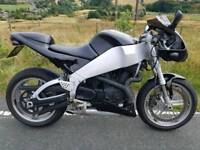 MAY PX BUELL XB9R FIREBOLT MAY PX ANY BIKE 1200 SPORTSTER