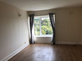 Smart, Two Bedroom, Top Floor Flat In Anderson Place, Hawick - £360pm