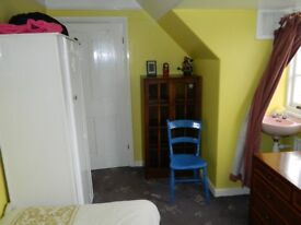 Large single room, NON-SMOKING, looking over gardens