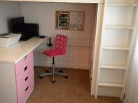 Beautiful Pink and white Ikea Bunkbed
