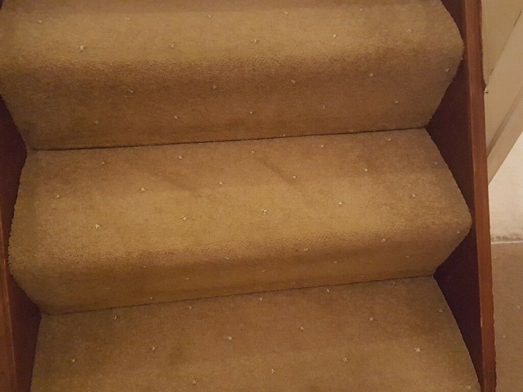 Stair and hallway carpet