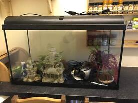 Large 200L fish tank and accessories £100