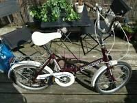 Stowaway 3 folding bike.