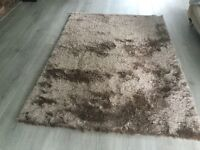 Large Brown Rug, 2 weeks old