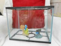 glass FISH TANK aquarium with LID and ORNAMENTS,rectangle, COLLECT BRI